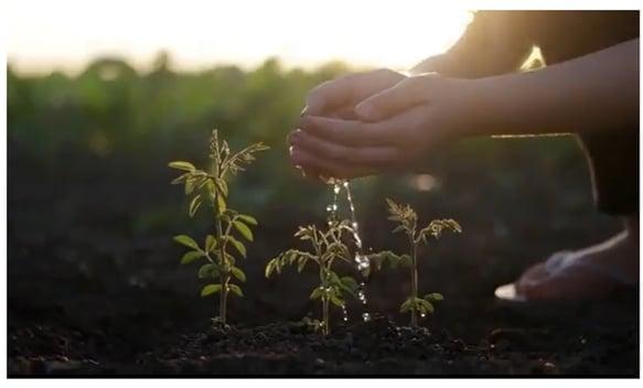 medio ambiente sostenibilidad entorno sostenible